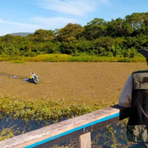 OPERAÇÃO DO GOVERNO DE MINAS COÍBE PESCA PREDATÓRIA NO RIO SÃO FRANCISCO